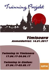 Flyer Timisoara